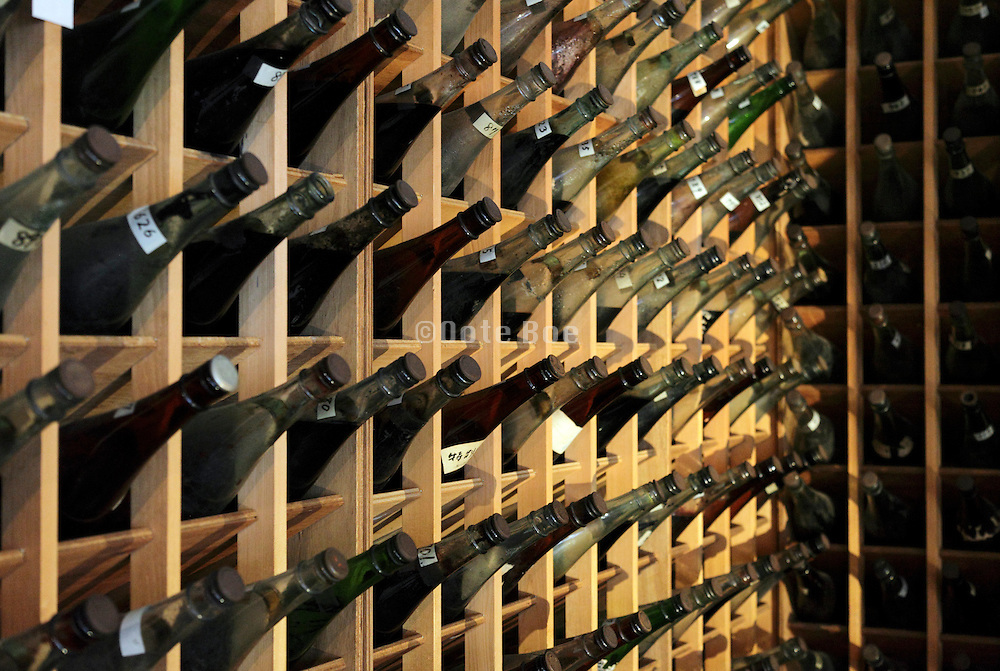 many bottles in rack for storage of colors for fabric dyeing Japan
