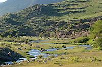 ARROYO, TAFI DEL VALLE, PROV. DE TUCUMAN, ARGENTIN