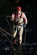 Fly fisherman.