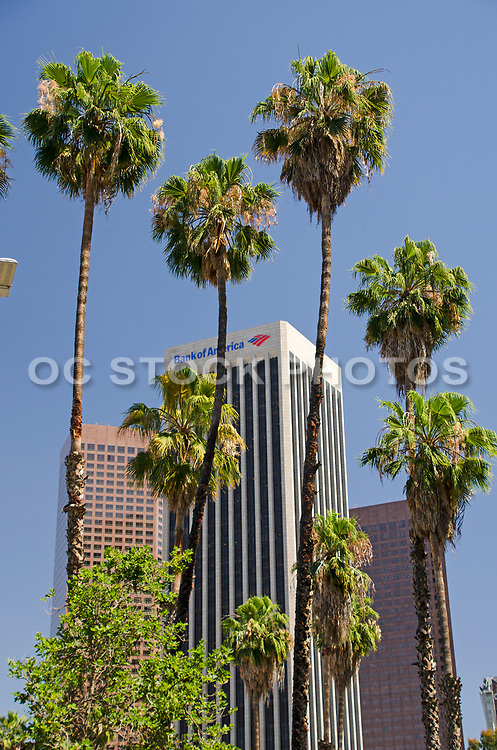 Bank of America Plaza Los Angeles