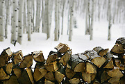 Piles of chopped firewood sit stacked on the porch of the Sundown cabin on the 1,500 acre Home Ranch in Clark, Colo. Sundown is one of eight cabins on the property. The ranch is a high-end dude ranch by summer and a cross country skiing and snowshoeing paradise in the winter. The Home Ranch also welcomes guests with world-class dining at the all-inclusive ranch near Steamboat Springs. The ranch has been open since 1980 and rates in the winter range from $420/night for a room in the lodge to $525/night for a cabin..(MARC PISCOTTY/ © 2007)