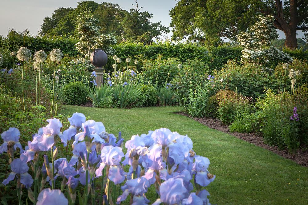 Border with Amsonia var salicifolia, Iris 'Jane Philips' Alium 'Mount Everest', Centranthus ruber 'Alba', Rose Walk. Copper sundial by David Harber, Manor Farm, Cheshire