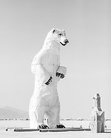 Long View, A Polar Bear Stands in the Desert by: Don Kennell and Arctic Burn 505 from: Santa Fe, NM year: 2018