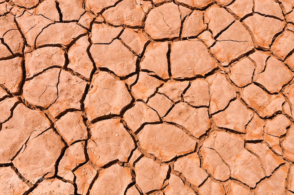 Cracked mud patterns on the playa, Clark Dry Lake, Anza-Borrego Desert State Park, California