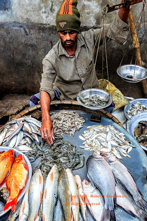 Fish Monger: From his broad array of fish at his market stall, a fish monger raises a tray of prawns in his hand held weight scales, Dhaka Bangladesh.