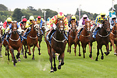 York Races Newby and Press Family 090918