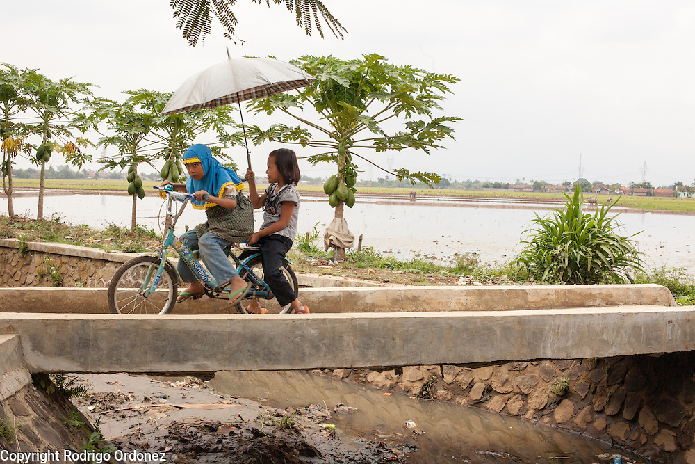 Girls ride a bicycle across a small bridge over the polluted waters of one of the distributaries of the Citarum river in Padamulya, Majalaya district, Bandung regency, Indonesia. ..The Citarum river, which runs about 270 kilometers through the province of West Java, is considered to be among the world's dirtiest. Over the last twenty years, the river has been severely polluted by toxic industrial waste, trash and raw sewage. The Citarum is one of the main sources of freshwater for West Java and supplies about 80% of water for Indonesia's capital Jakarta.