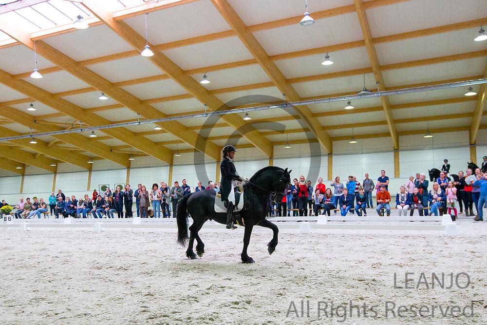Jenny Veenstra - Wolter V<br /> Europees Kampioenschap Jonge Paarden 2017<br /> © DigiShots