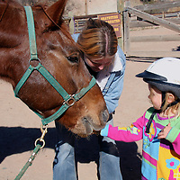 North America, USA, New Mexico. A young girl greets and feeds a horse at riding stables of Bishop's Lodge Resort near Santa Fe, New Mexico.
