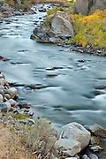Gardner River in Yellowstone National Park Wyoming