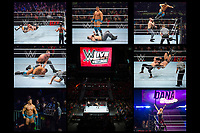 WWE Live Road to Wrestlemania - Canadian Tire Centre, Ottawa, ON. Canada.<br /> <br /> Feb. 8, 2019<br /> <br /> PHOTO: Steve Kingsman/Freestyle Photography for Canadian Tire Centre.