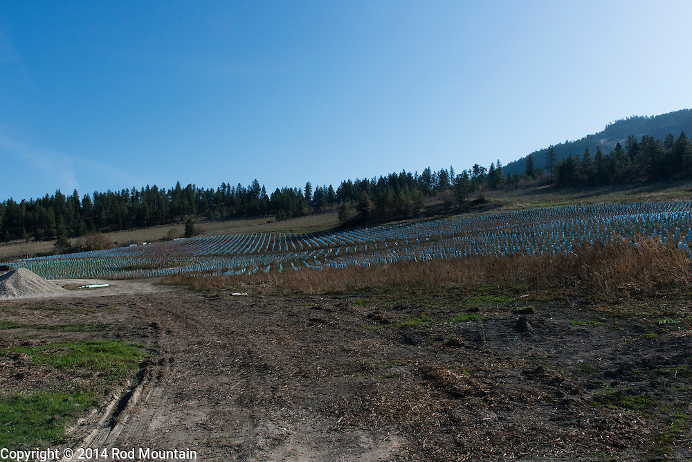 A new winery under development in the Okanagan.