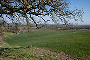 Warwickshire landscape on 4th April 2021 near Studley, United Kingdom. The bough of an oak tree frames the agricultural land below.  (photo by Mike Kemp/In Pictures via Getty Images)