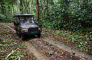 Safari vehicle<br /> Ngaga Camp<br /> Republic of Congo (Congo - Brazzaville)<br /> AFRICA