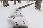 Footprints in the snow on a path through a neighborhood park in Boulder, Colorado.