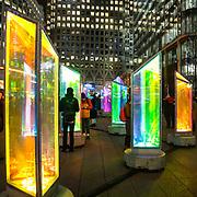 L'annuale edizione del festival delle luci a Canary Wharf, una mostra all'aperto di installazioni luminose. Prismatica di Raw Design<br /> <br /> The yearly edition of the lights festival in Canary Wharf, an open-air exhibition of light installations. Prismatica by Raw Design<br /> <br /> #6d, #photooftheday #picoftheday #bestoftheday #instadaily #instagood #follow #followme #nofilter #everydayuk #canon #buenavistaphoto #photojournalism #flaviogilardoni <br /> <br /> #london #uk #greaterlondon #londoncity #centrallondon #cityoflondon #londonuk #visitlondon<br /> <br /> #photo #photography #photooftheday #photos #photographer #photograph #photoofday #streetphoto #photonews #amazingphoto #dailyphoto #funnyphoto #goodphoto #myphoto #photoftheday #photogalleries #photojournalist #photolibrary #photoreportage #pressphoto #stockphoto #todaysphoto #urbanphoto
