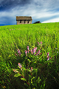 Springtime on the Beckman Wildlife Management Area, Montana.