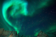 Northern Lights above the mountains surrounding Reinefjord in winter, from Olenilsoy, Moskenesoya, Lofoten Islands, Arctic Norway © Rudolf Abraham