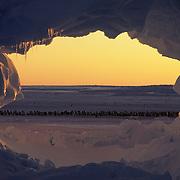 Emperor Penguin (Aptenodytes forsteri) rookery seen through a hole in a tabular ice berg. Atka Bay, Antarctica