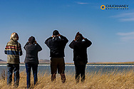 Birders at Freezeout Lake WMA during spring migration near Choteau, Montana, USA