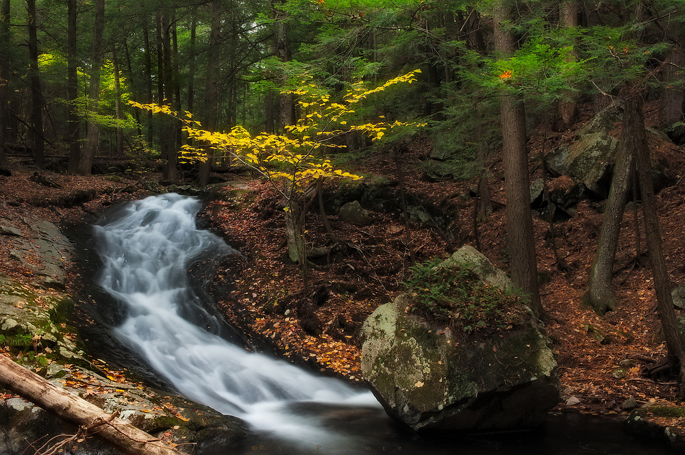 Deep in the woods, I followed a trail aimlessly, high above Lake George.  It had been a wet autumn, and when I came across a creek flowing nicely, I followed as the mountain steepened, and the pace sped up.  Above a deceptively deep pool,  I was captivated by a cascade, grouped together with a large erratic, bearded in ferns, and a beech glowing in autumn's  yellow.  For quite some time I lingered here, unsure of what it was that drew me in. When I left, I still couldn't see what I see here now.  I had found a circle.  It's not perfect, I had to connect the parts.  An anchor, deposited in some ice age, by a glacier that probably scraped the bedrock for the stream, whose part of the arc is fluid, changing.  A tree, whose branches reach high and wide, to shelter, and embrace.   It is a triad, an arrangement of subjects, and lately I realized they are not unlike the friends we are.   They were thrown together randomly, like we were, since some time long ago, a time that begs remembrance, but won't get it here.  It suffices that we simply are.   We could probably assign some element in that scene to describe ourselves.   More likely, there are parts of all of these, in each of us.  Sometimes we are lost from each other, invisible in a thick fog.  Buried under a blanket of weather.  Incommunicado in the darkest night.  But the circle always comes back around, and completes as though it was never broken.  There is nothing as precious as that ability-- to continue as though time has no passage.  It is probably a trick of the mind, but I always think of us as we appeared to each other when we met.  Whether our circle has expanded to great distances, or shrunk to the size of a three way hug, we are bound in our hearts timelessly, as surely as my glade in the forest…tres amigos.  Friends.