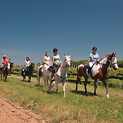 Vineyard Ride, June 2013