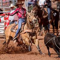 Breakaway roper Chali Simpson pulls her horse back during the second round of the New Mexico High School Finals rodeo at Red Rock Park in Gallup Saturday.