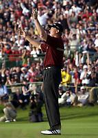 Golf. Open Golf Championships 2002. 20-21.07.2002.<br /> Ernie Els, Sør-Afrika.<br /> Foto: Matthew Impey, Digitalsport