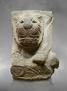 Alaca Hoyuk - Hittite lion sculpture corner Stone . Andesite. Alacahoyuk, 1399 - 1301 B.C. Anatolian Civilisations Museum, Ankara, Turkey.<br /> <br /> Corner stone with sculpted lion, bull and winged sun disk. It was discovered at the right side of the Alacahoyuk sphinx door. The lion puts his front legs on a small bull. There is a Hittite winged sun disk on the abdomen of the lion, which can be seen from a lower location. The position of the sun course indicates that the stone is situated in a high place.<br /> <br /> Against a grey art background.