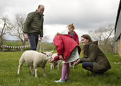 The Duke and Duchess of Cambridge strokes lambs with farmers daughters Clover 9, and Penelope Chapman, 7, during a visit to Manor Farm in Little Stainton, Durham. Picture date: Tuesday April 27, 2021.
