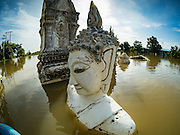 30 SEPTEMBER 2016 - SAI NOI, AYUTTHAYA, THAILAND: Statues of the Buddha at the flooded Wat Boonkannawas in Sai Noi. The Chao Phraya River, the largest river that runs through central Thailand, has hit flood stage in several areas in Ayutthaya and Ang Thong provinces. Villages along the river are flooded and farms are losing their crops due to the flood. This is the same area that was devastated by floods in 2011, but the floods this year are not expected to be as severe. The floods are being fed by water released from upstream dams. The water is being released to make room for heavy rains expected in October.      PHOTO BY JACK KURTZ
