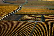 France, Languedoc Roussillon, Gard (30), Uzège, région Uzès, vignobles, vue aérienne