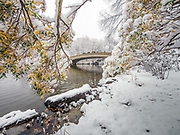 The Bow Bridge is covered in snow in Central Park, New York City.