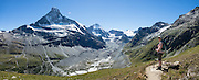 The Matterhorn (4478 m/14,692ft) rises above Zmutt Valley. From Zermatt, hike the scenic Höhbalmen Höhenweg loop via Bergrestaurant Edelweiss, Trift Hut and Zmutt, in the Pennine Alps, Switzerland, Europe. With delightful views of alpine meadows, peaks and glaciers, this strenuous walk went up and down 1200 meters over 21.6 km (13.4 miles). This image was stitched from multiple overlapping photos.