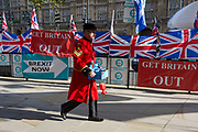 On the day that the EU in Brussels agreed in principle to extend Brexit until 31st January 2020 aka Flextension and not 31st October 2019, a Chelsea Pensioner selling Remembrance poppies, walks past Brexit Party flags and banners during a Brexit protest outside parliament, on 28th October 2019, in Westminster, London, England.