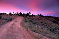 Pink and purple clouds at sunset over dirt road in the rugged hills of Santa Cruz Island, Channel Islands, California