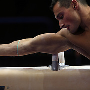 Brandon Wynn, Columbus, Ohio, shows his muscles and physique during warm up on the Pommel horse before competiton during the Senior Men Competition at The 2013 P&G Gymnastics Championships, USA Gymnastics' National Championships at the XL, Centre, Hartford, Connecticut, USA. 16th August 2013. Photo Tim Clayton