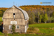 Rustic barn with fall color near Bruce Crossing, Michigan, USA