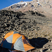 A tent in the foreground at Lava Tower Camp (15,215 feet) with part of the Western Breach in the background on Mt Kilimanjaro's Lemosho Route.