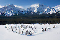Athabasca River Valley in winter, Jasper National Park Alberta Canada