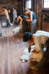 New Zealand, North Island, near Wellington, sheep wool production displays of shearing, spinning, weaving, and products at The Wool Shed in Wairarapa. Photo copyright Lee Foster. Photo # newzealand125769
