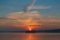 https://Duncan.co/1000-islands-sunrise-2