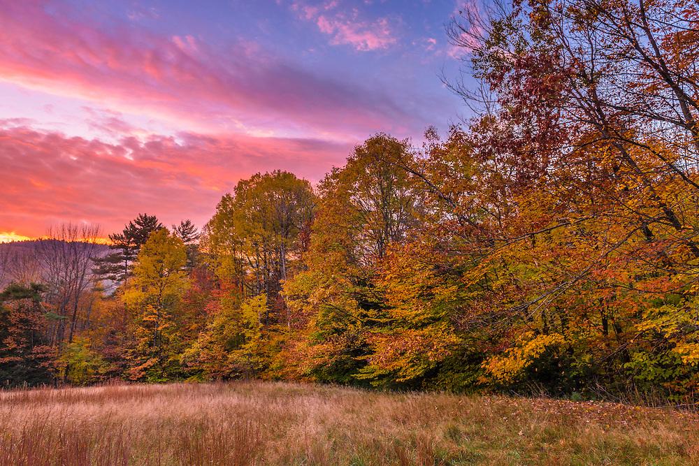Magenta & pink morning sky over fall treeline on hill, Bristol, NH