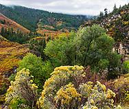 The rocky mountains in autumn, Glenwood Springs; Colorado, USA