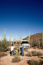 RV life: RV life at Saguaro National Monument, AZ  .Photo Copyright: Lee Foster, lee@fostertravel.com, www.fostertravel.com,  (510) 549-2202.Image rvlife207