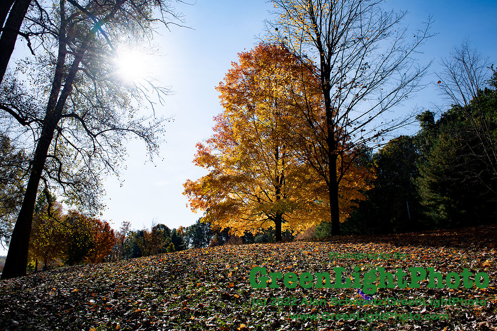 Fall foliage at Mendon Ponds Park located in Mendon in Western New York State. Photo by Alan Schwartz/GreenLightPhoto.