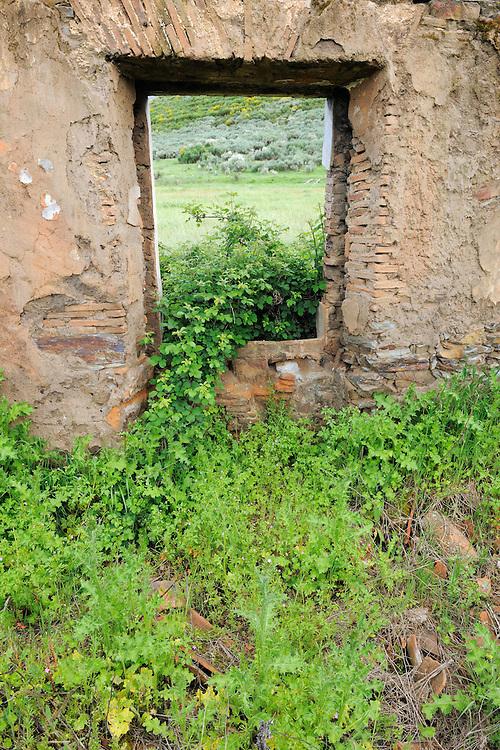 Land abandonment<br /> Vegas de Domingo Rey village<br /> Salamanca Region, Castilla y León, Spain