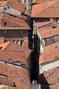 Rooftops and traditional architecture in Lucca, Italy