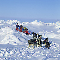 INTERNATIONAL ARCTIC PROJECT, Expedition team mushes over wind-sculpted pressure ridge on Arctic Ocean.