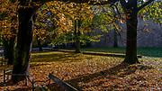 Jesień na krakowskich Plantach, Polska<br /> Autumn in the Cracow Planty, Poland